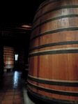 Wine barrels Cousiño Macul